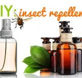 DIY insect repellent