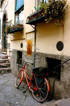 Dreaming of Italy... Lucca!
