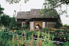 cabin, wild gardens, dreams, dream homes, cottage gardens, dinners, kinfolk, cottages, garden houses