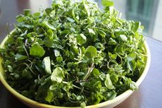 Watercress Is The Healthiest Vegetable? Carrot is #26? Here's A Chart To Memorize.