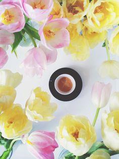 Tulips + espresso