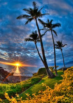 Stunning #sunset in #Hawaii | Pin by @GuessQuest