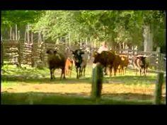 Dudley Farm, State Historic Park