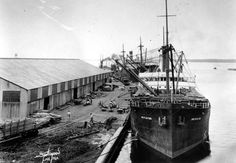 Steamboats docked at Commodore Point. FL, 1939. State Archives of Florida, Florida Memory.