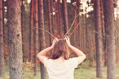branch, forest