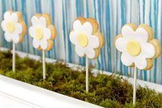 yellow white daisy theme flower girl baby shower flower cookie pops
