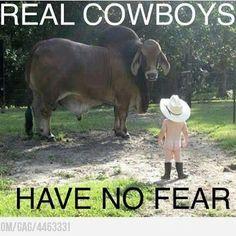 Refreshing Home, Cowboy, Bulls, Fear