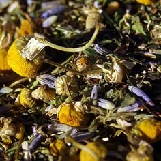 medicinal teas can be purchased through local harvest org, yay! great resource for local foods, herbs, etc...