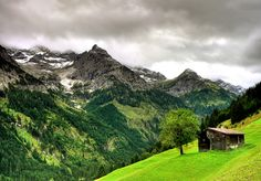 Beautiful alpine pastures in the Austrian Alps #austria #alps #chalet #summer #nature #green