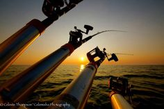 A Pure Michigan Spring Fishing Preview 2014