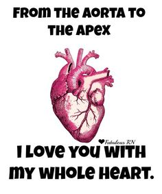From the aorta to the apex, I love you with my whole heart. Nurse humor. Nursing funny. Registered Nurses. RN. Medical. Hospital. Anatomical Heart Valentine. Nurses Valentine's Day Card. Fabulous RN.