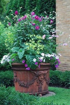 Beautiful container and plantings