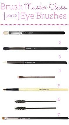 brush-master-class-part-2-eye-brushes.jpg 500×899 pixels