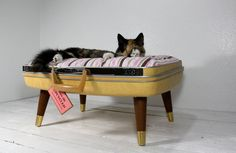 Upcycled Cat Bed #upcycle #vintage_suitcase #vintage #cat_bed #pet_bed #cat #pet #recycled #suitcase #etsy #atomic_attic #attomicattic
