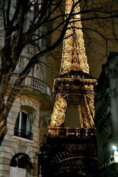 eiffel tower / paris, france