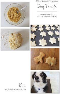 Chicken & Cheese Dog Treats {Recipe}