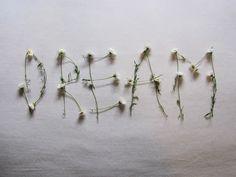 Dream dream big, artificial flowers, making words, dreams, wedding styles, bedroom walls, inspir, dried flowers, girl names
