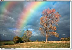 Add a rainbow pot of gold, tree, rainbows, cloud, store displays, mother nature, photographi, photoshop tutori, photo effects
