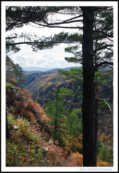 Wellsboro, PA home of the Grand Canyon of Pennsylvania