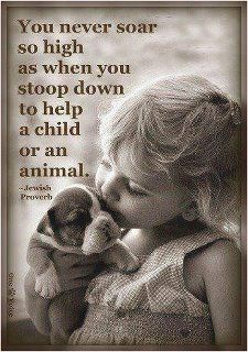 Help a child or animal