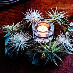 28 festive winter arrangements   Tabletop wreath   Sunset.com