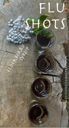 Elderberry for the Flu at FreshBitesDaily.com
