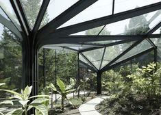garden architecture, grüningen botan, wuest architekten, tree, botan garden