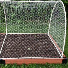 """Cover to keep squirrels & rabbits out of  raised vegetable beds. It is made from 1/2"""" PVC pipe, PVC fittings & chicken wire."""