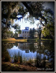 "The Greenwood Plantation played host to the epic TV mini-series ""North and South"""