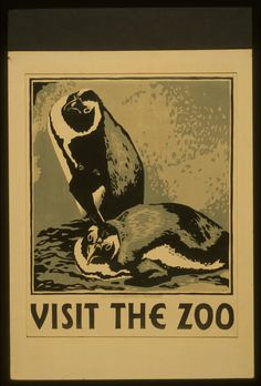 Poster promoting the zoo as a place to visit, showing two penguins.  NOTES: Date stamped on verso: Aug 4 1937.