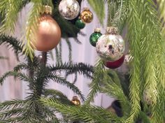 Greener Christmas Trees. Buy a potted tree for your Christmas tree this year and enjoy it year-round. Or buy a balled tree and plant it after the holidays.  If you do use a live Christmas tree, recycle it after the holidays instead of sending it to a landfill. Ask your local solid waste department whether they collect and mulch trees. Your town might use chippings from mulched trees for hiking trails and beachfront erosion barriers. http://www.epa.gov/waste/wycd/winter.htm