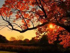 Yanni... November Sky - YouTube