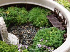 wee fairy garden