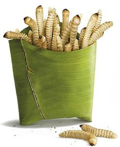 Are BugFoods the future of FastFoods? Imagine Bug fries instead of French fries, Bug Macs instead of Big Macs...