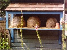 shelter, garden, bee skep, honey bee