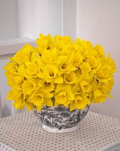 There's forecasts of snow this Friday, but I will content myself with spring flowers until the weather turns. Yellow Flowers, Spring Flowers, Autumn Flowers, Spring Parties, Happy Colors, Bouquets, Black White, Centerpieces, Yellow Floral Arrangements