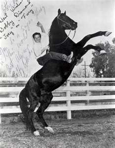Fury was an equine actor with his own tv show in the 50's