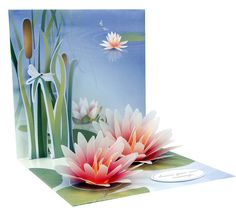 Mother's Day Pop-Up Greeting Cards 2012 by Katie Scheid