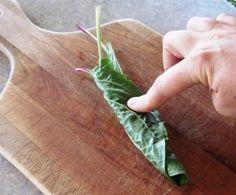 Grandma Called it Medicine Leaf.  Plantain Medicinal Properties and Herbal Use