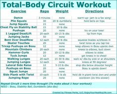 Total Body circuit workout!