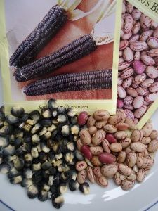 Great information on seed saving and personal seedbanks!