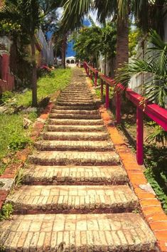 99 Steps in St. Thomas. This step-street was built by the Danes in the 1700s. Follow it to Blackbeard's Castle.