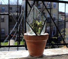 halona glass prism plant topper, $130.00