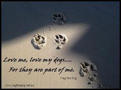 anim, dogs, dog quot, pet, wisdom, furbabi, true, dog life, thing