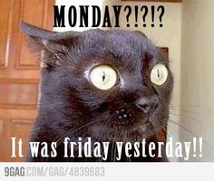 Mondays!!
