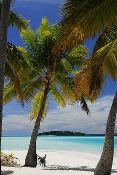 Cook Islands Aitutaki... Ok all I need is a hammock in between the palm trees.