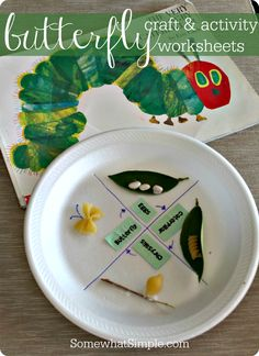 darling butterfly craft + activity!
