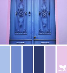 Blue and lilac