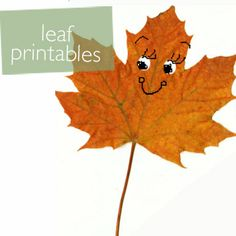 Printables Leaf Book   willowday