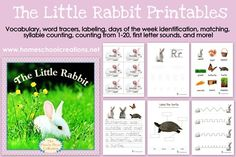 FREE printables to go along with the book The Little Rabbit by Judy Dunn from www.homeschoolcreations.net book fairs, books, rabbit printabl, baby bunnies, peter rabbit, the little rabbit, bfiar befor, childhood, preschool